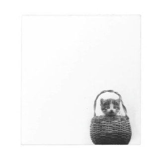 Cute Cat in a Basket Vintage Photo Notepad