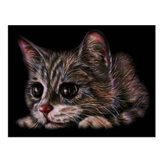 Cute Cat Kitten Art Drawing for Cat Lovers Postcard