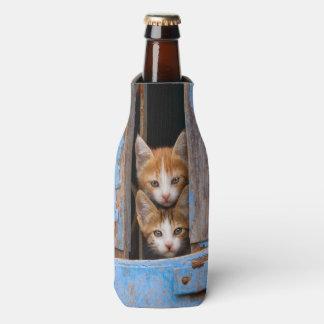 Cute Cat Kittens Friends in a Blue Vintage Window Bottle Cooler