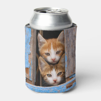 Cute Cat Kittens in a Blue Vintage Window - Bawdle Can Cooler