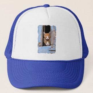 Cute Cat Kittens in Blue Vintage Window Photo  cap