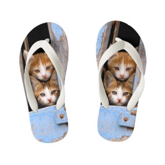 Cute Cat Kittens in Blue Vintage Window Photo Kids Flip Flops