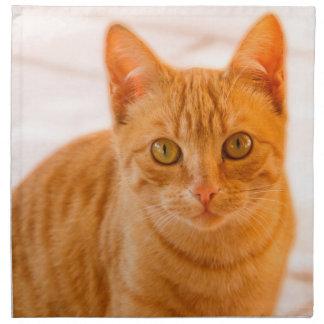 cute cat napkin