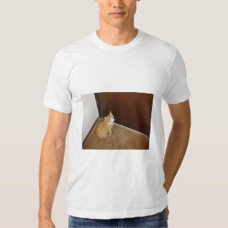 Cute Cat Near The Door On The Carpet Tshirts