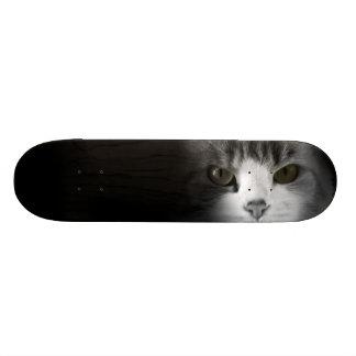 Cute Cat Skate Board