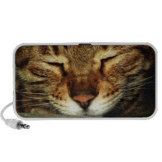 Cute Cat Travel Speaker