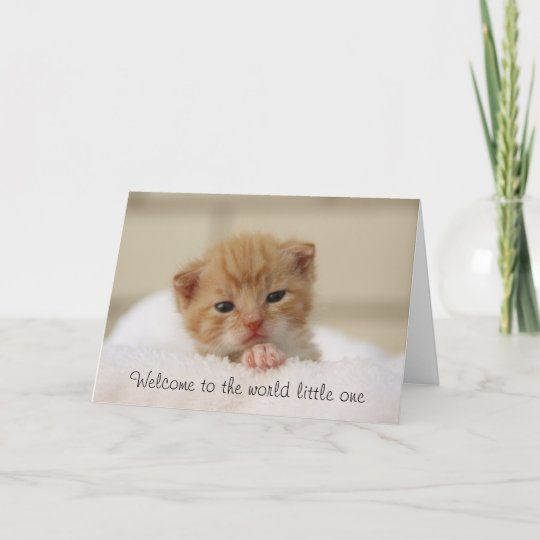 Cute cat welcome to the world baby greeting card zazzle cute cat welcome to the world baby greeting card m4hsunfo