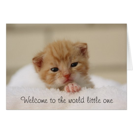 Cute Cat Welcome to the world baby greeting