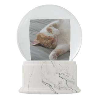 Cute cats sleeping Snow Globe