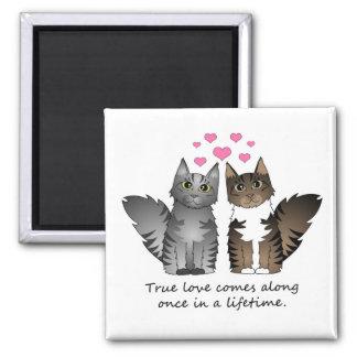 Cute Cats - True Love Square Magnet