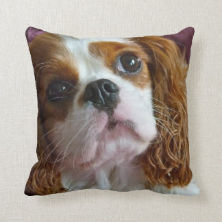 Cute Cavalier King Charles Spaniel cushion pillow