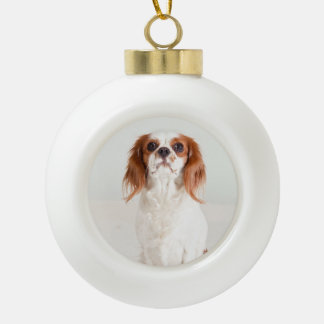 Cute Cavalier King Charles Spaniel Ornament