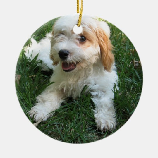 CUTE CAVAPOO PUPPY CHRISTMAS ORNAMENT