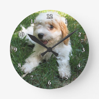 CUTE CAVAPOO PUPPY ROUND CLOCK