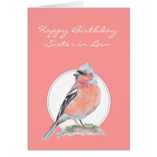 Cute Chaffinch, Birthday Sister -in-Law Card