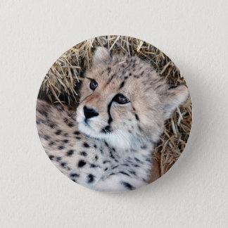 Cute Cheetah Cub Photo 6 Cm Round Badge