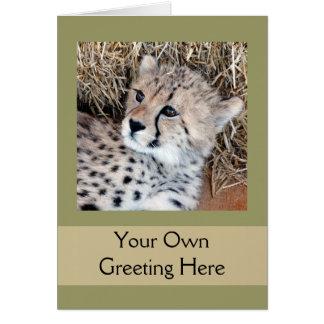 Cute Cheetah Cub Photo Card