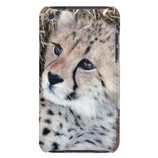 Cute Cheetah Cub Photo iPod Touch Case