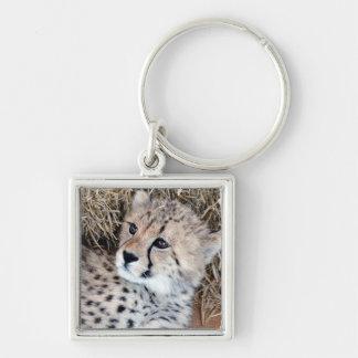 Cute Cheetah Cub Photo Key Ring