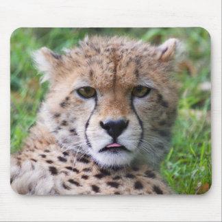 Cute cheetah cub portrait mouse mat