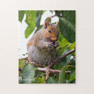 Cute Cherry Picking Eastern Grey Squirrel Puzzle