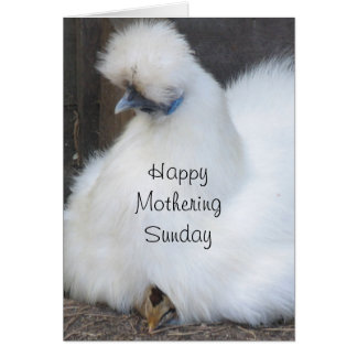 Cute chick/ chicken Mothering Sunday card