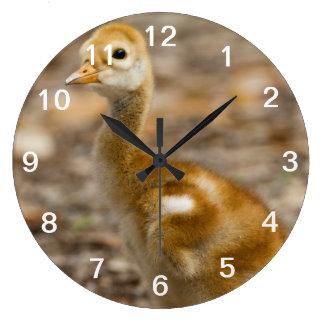 Cute Chick Wall Clocks