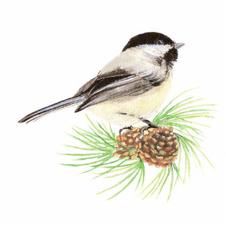 Cute Chickadee Bird, Nature, Wildlife, Animal Cut Out