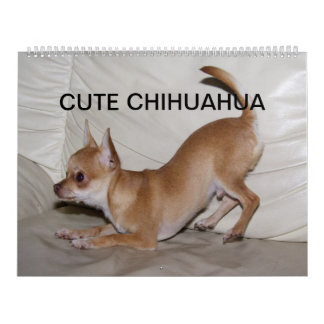 Cute Chihuahua 2018 Calendars