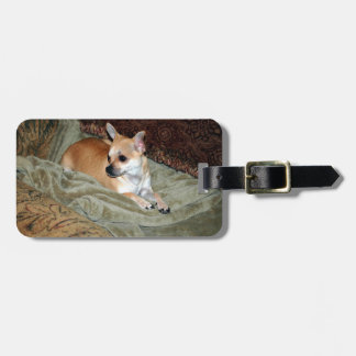 Cute Chihuahua Dog Luggage Tag