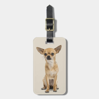 Cute Chihuahua Puppy Luggage Tag