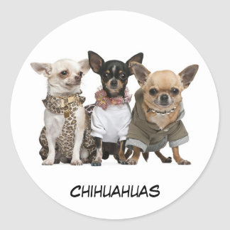 Cute Chihuahuas Round Sticker
