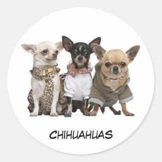 Cute Chihuahuas Round Sticker