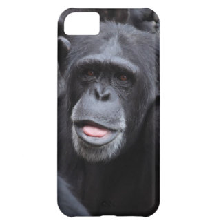 Cute Chimp Picture for iPhone 5 case