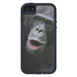Cute Chimpanzee Tough Xtreme iPhone 5 Case
