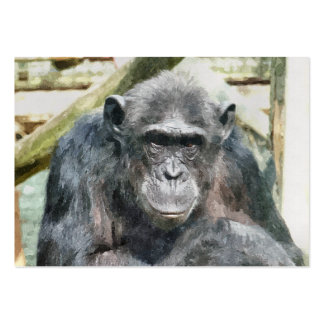 CUTE CHIMPANZEES PACK OF CHUBBY BUSINESS CARDS