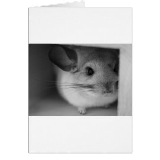 Cute Chinchilla Greeting Card