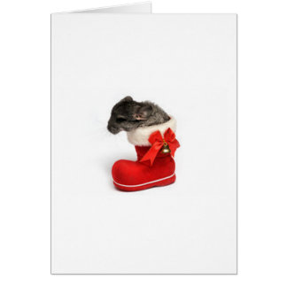 Cute Chinchilla in Christmas Stocking Greeting Card