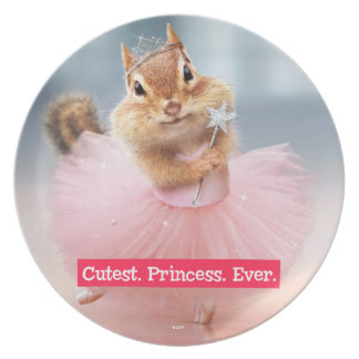 Cute Chipmunk Ballerina in tutu at Dance Studio Plate