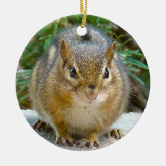 Cute Chipmunk Has His Eye On You Christmas Ornament