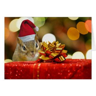 Cute Chipmunk Merry Christmas Card