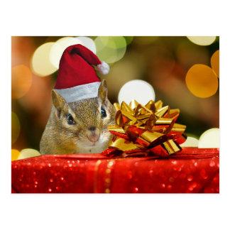 Cute Chipmunk Merry Christmas Postcard