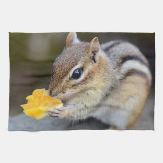 Cute Chipmunk Snacking on a Sweet Orange Hand Towel