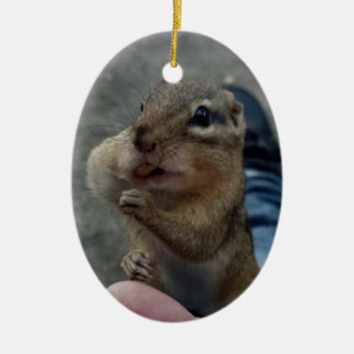 Cute chipmunk stuffing his cheeks christmas ornament