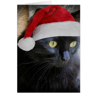 Cute Christmas Card, Pretty Black Cat w Santa Cap Card