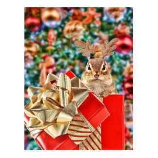 Cute Christmas Chipmunk Postcard
