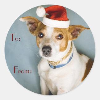 Cute Christmas Dog Name Tags