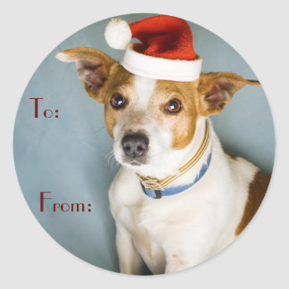 Cute Christmas Dog Name Tags Round Sticker