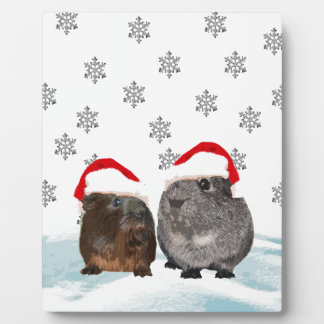 Cute Christmas Guinea pigs in Santa Hats Plaque