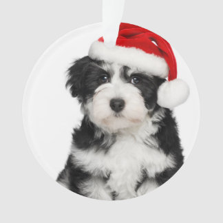 Cute Christmas Havanese Puppy Dog 2 Ornament